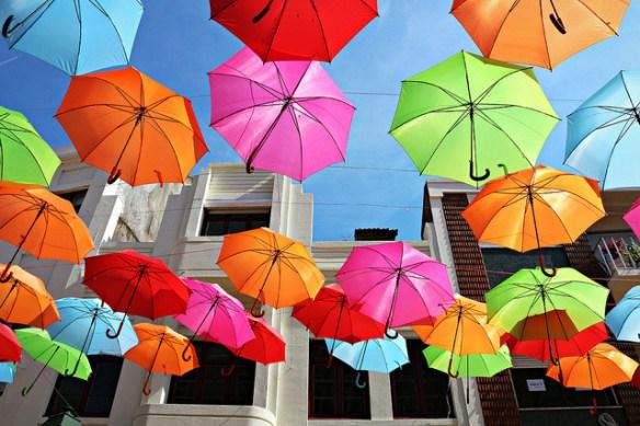 Cubierta de paraguas 3