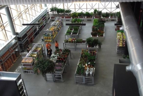 Sección jardinería Teyoland