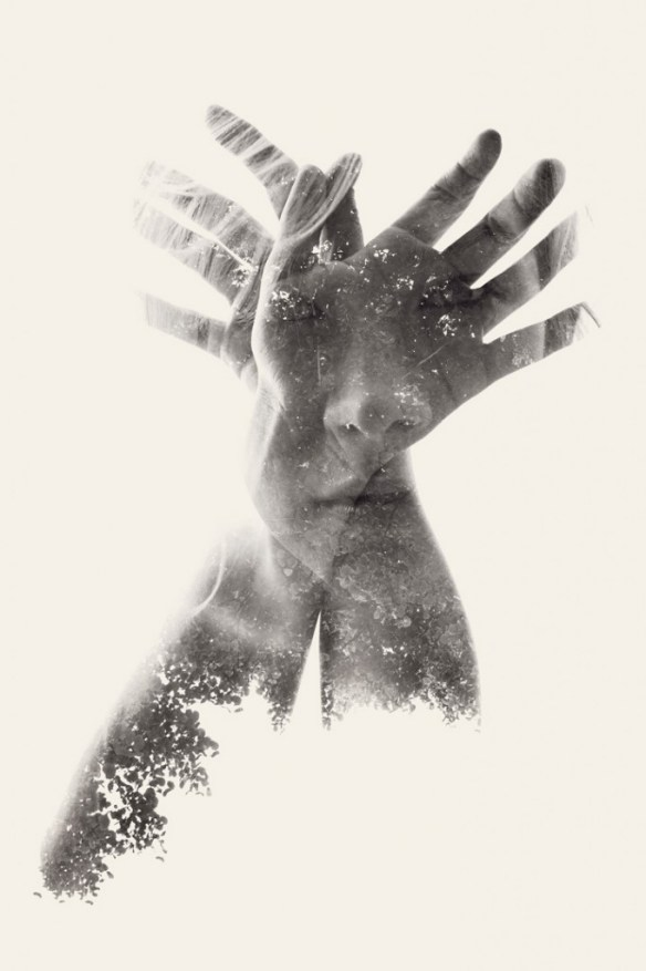 Butterlfy we are nature by christoffe Relander