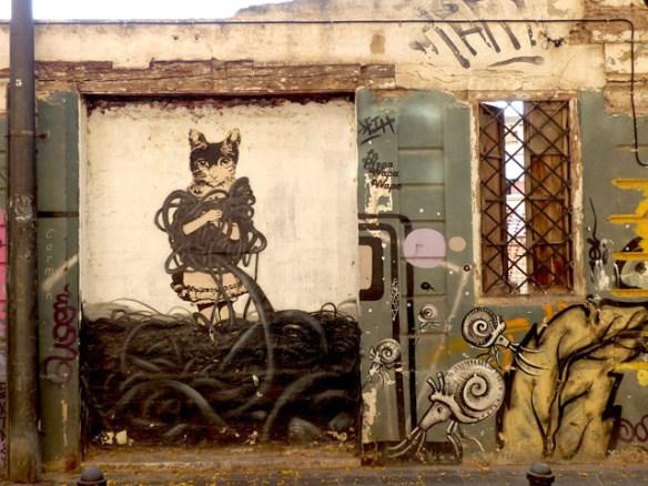 barrio-dl-carmen-gato