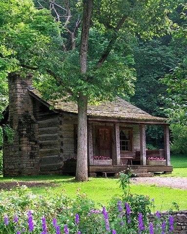 primavera cabana bosque