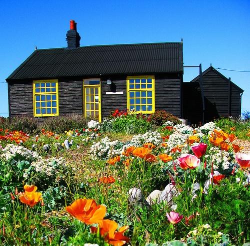 primavera con cabana tulipanes