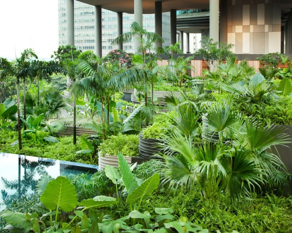 jardines_aereos_hotel9
