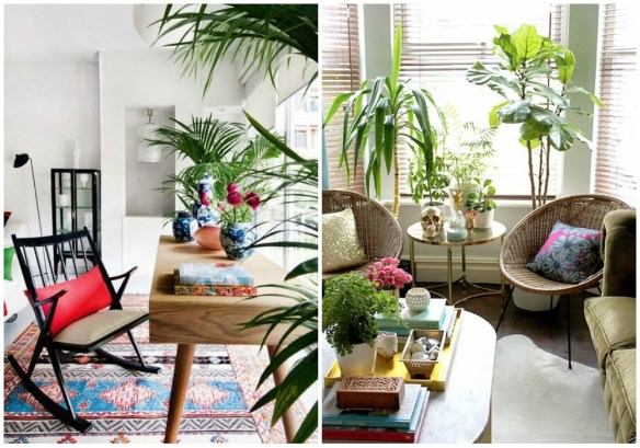 01-estilo-tropical-plantas