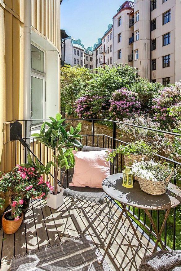 Jardin en el balcon 21