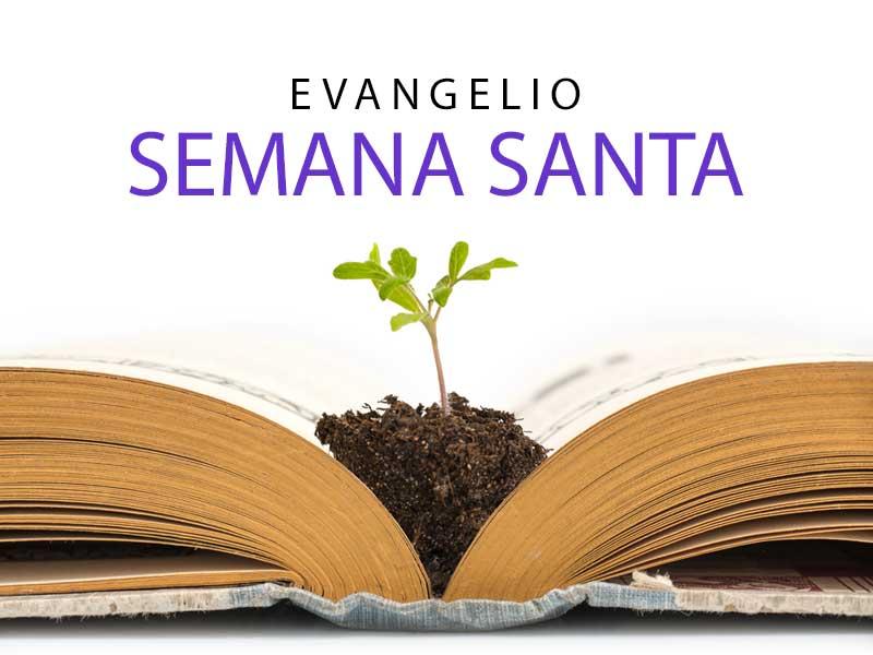 evangelio-semana-santa