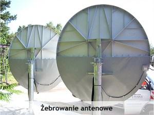 anteny_satelitarne_pola_antenowe_3_zebrowanie