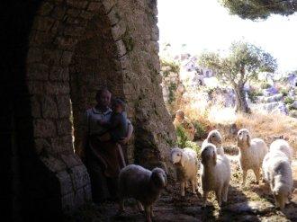 statue presepe pecorelle