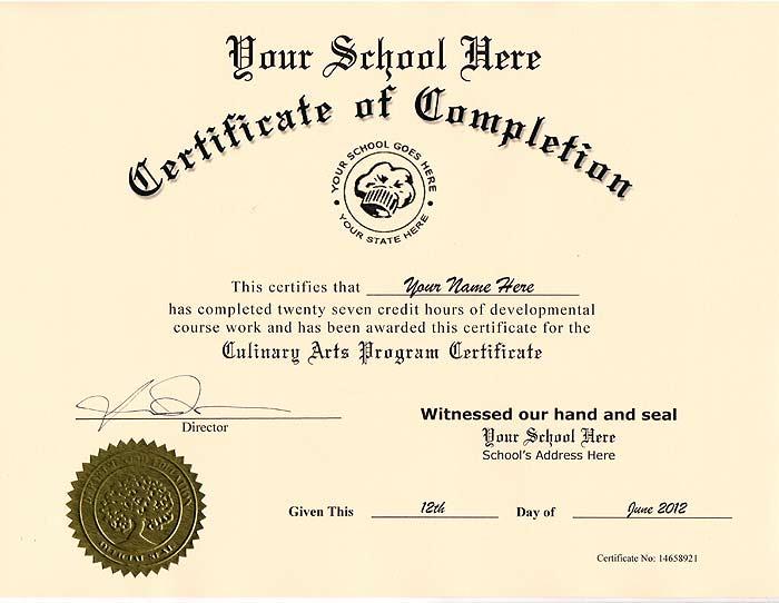 Culinary Certificate Fake Culinary Certificate Culinary