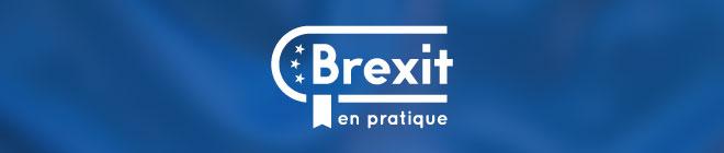 Brexit Séjour Linguistique