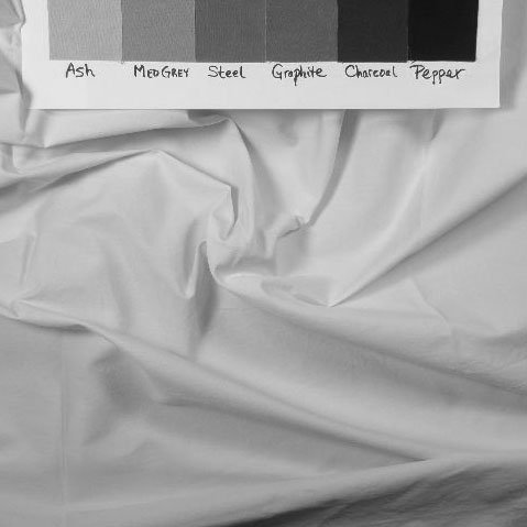 Black and white image of fabric 450 to show value