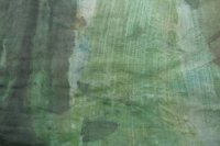 Green-brown-grey monoprint