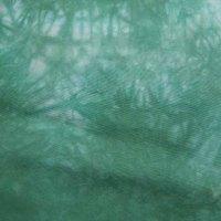 Medium sea green and white on 419