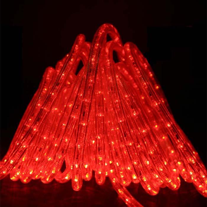 Red LED Rope Lights 50FT RLWL50RED  DirectLightingcom