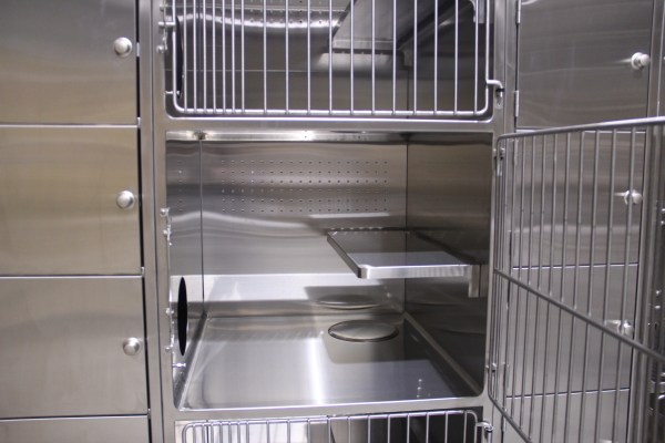 Stainless Steel Animal Shelter Cat Cages