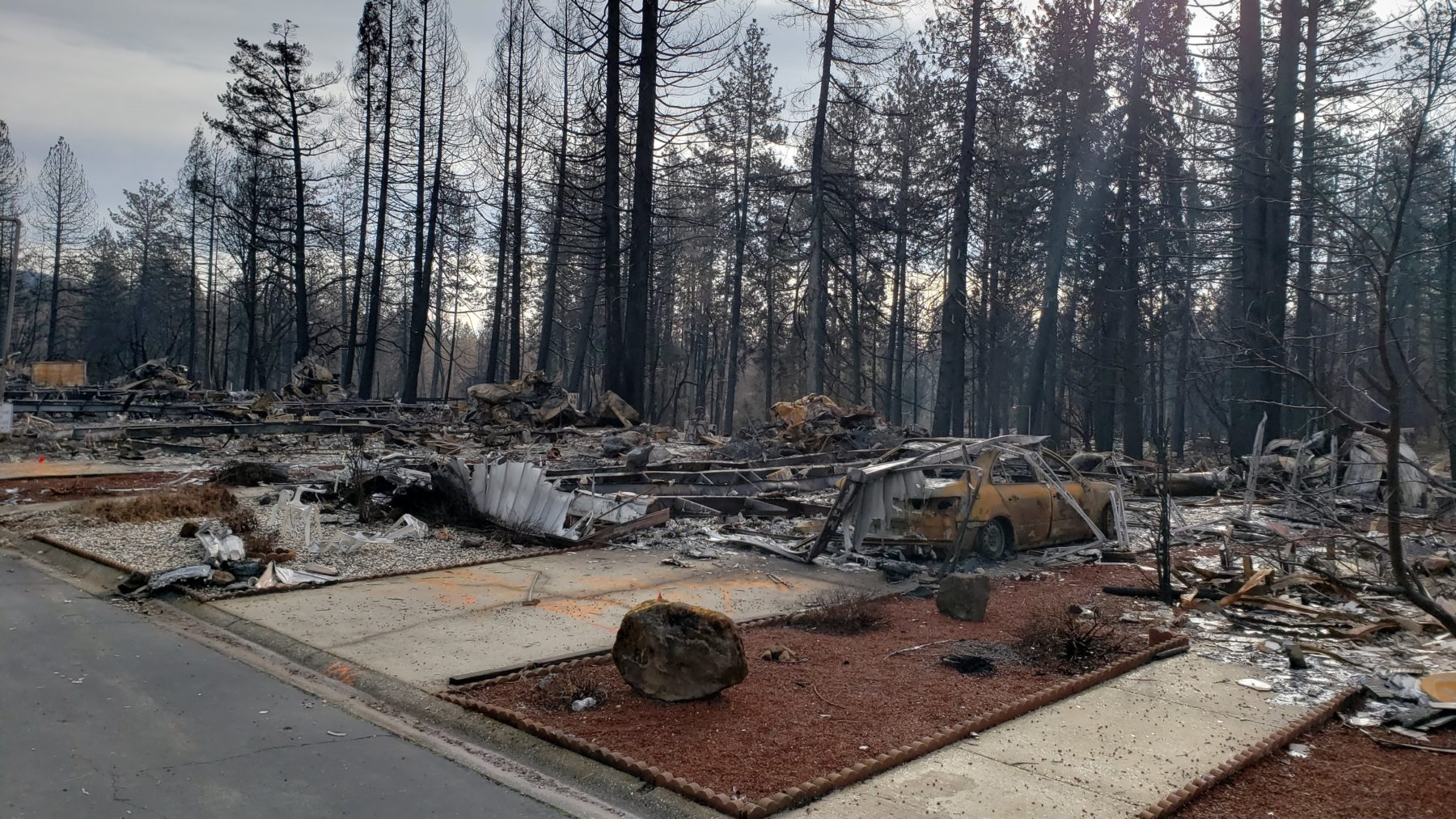 Lots sit empty after the Camp Fire burned through neighborhoods in Paradise, CA on Nov. 8, 2018. (Andrew MacCalla/Direct Relief)