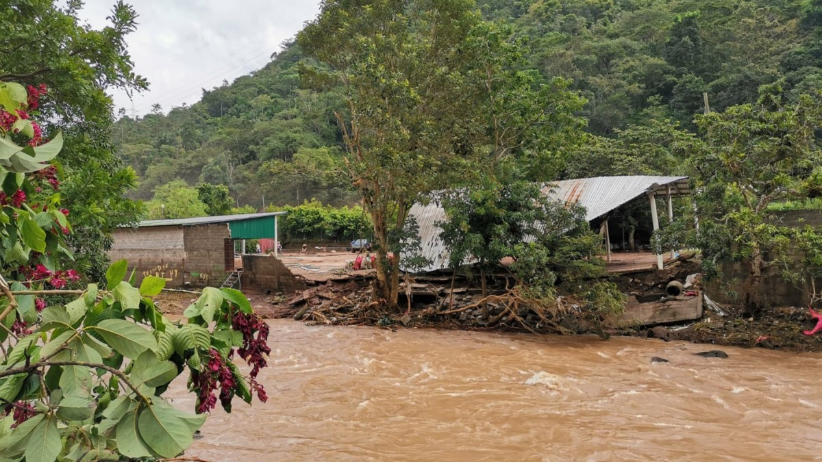 After Two Deadly Hurricanes, On the Ground in the Sula Valley of Honduras