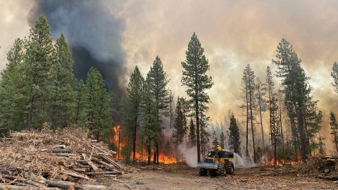 Oregon's Bootleg Fire had reached nearly 400,000 acres on the morning of Wednesday, July 21. (Photo courtesy of the Oregon Department of Forestry)