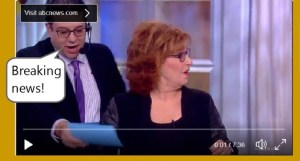 theview fake news