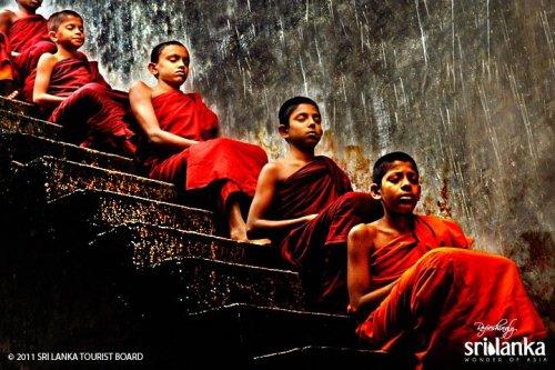 5 Top Reasons To Visit Sri Lanka 3