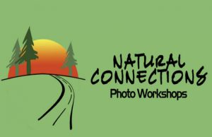Natural-Connections-Photo-Workshops-Logo