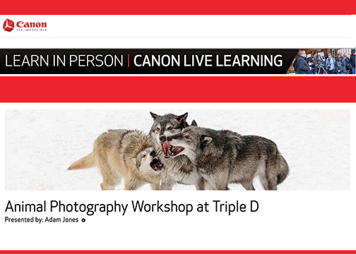 Canon-Destination-Workshop-2019