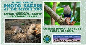Sigma-Dealer Workshops-Woodward-Zoo