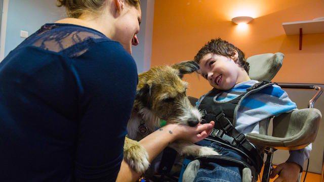 Diritto al trasferimento per assistenza al disabile, le garanzie della legge