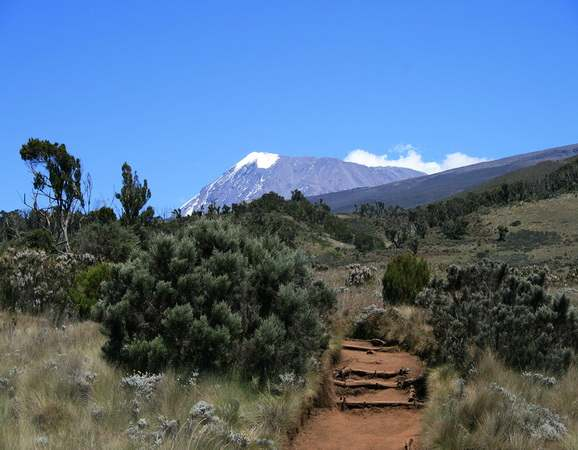 View at Mt Kilimanjaro