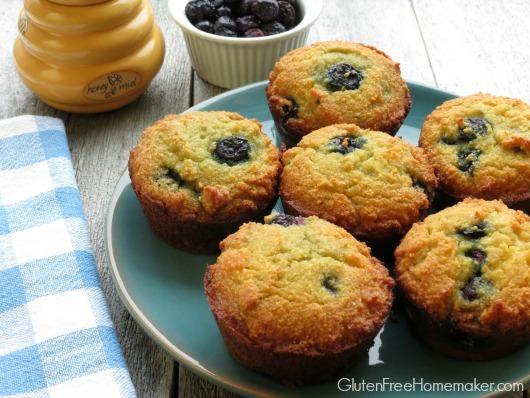 Blueberry Coconut Flour Muffins