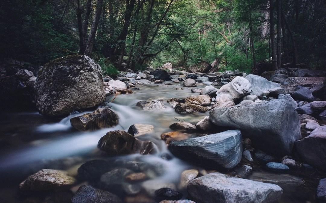 torrente - gara