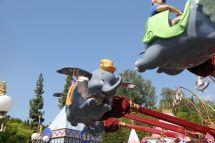 Dumbo Flying Elephant - Fantasyland Disneyland Park