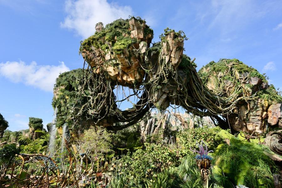 Image of: Na Vi Pandora The World Of Avatar Wdw Info Pandora The World Of Avatar Disneys Animal Kingdom
