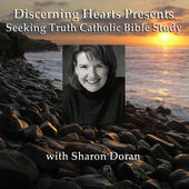 Subcribe to Discerning Hearts Catholic Podcasts 3