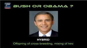 BushObama Hybrid