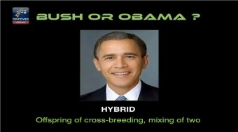 Bush Obama Hybrid - The Nephilim (Fallen Angels) Controversy
