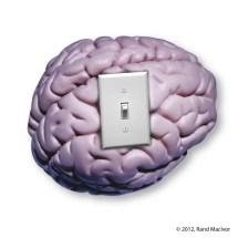 brainswitchnew