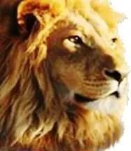 lion of judah - latter rain / NAR / New Apostolic Reformation