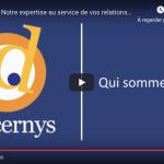 Vidéo présentation Discernys