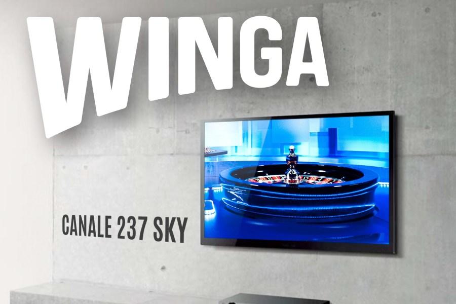 Winga arriva su Sky al canale 237