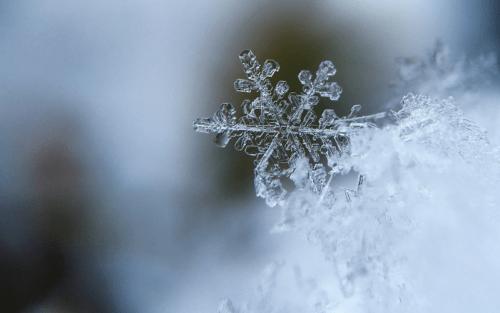 Il cristallo di neve è l'elemento di base della neve stessa
