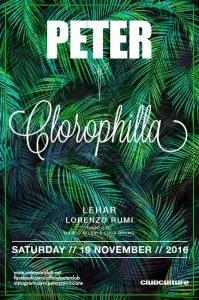 peter-pan-clorophilla-19-11-2016