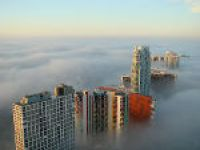 Miami Fog