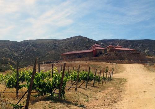 Las Nubes Winery valle de guadalupe