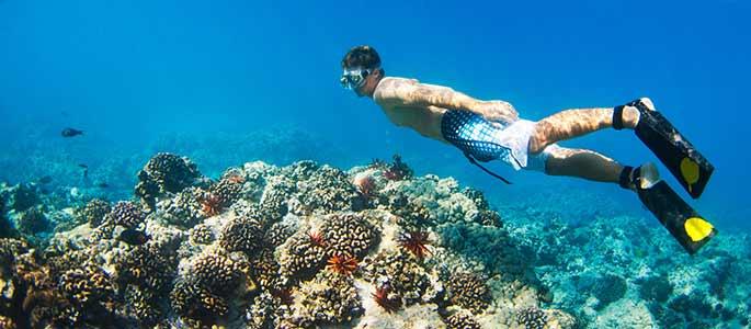 Dive Deep Below the Surface at Hidden Snorkel Spots