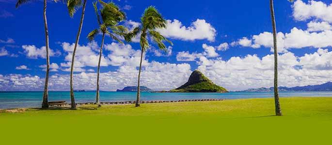 Circle Island Oahu Tour