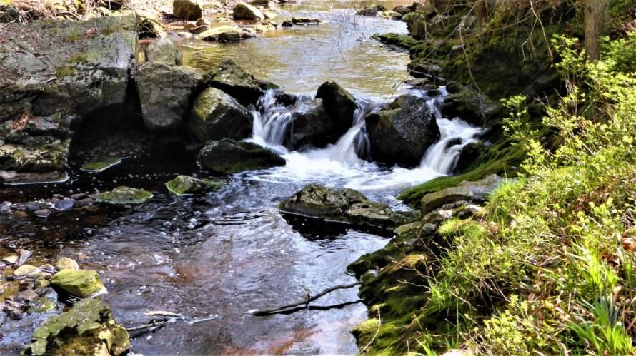 Hoegne-valley (2)