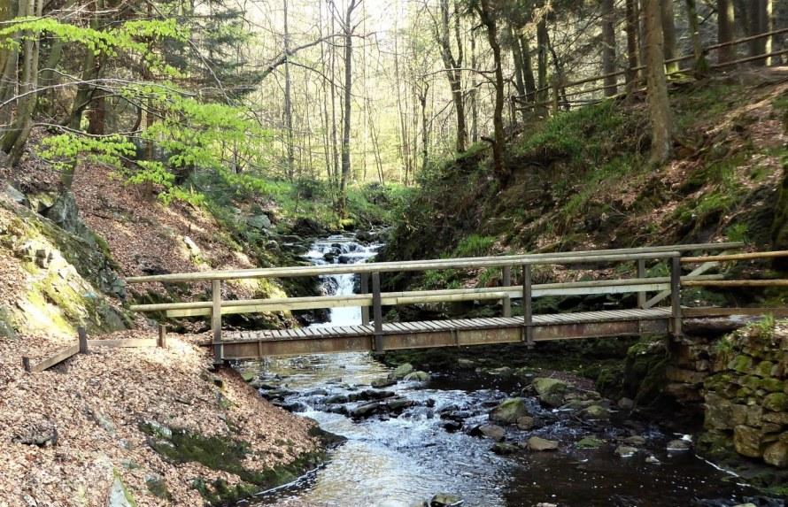 Hoegne-valley (6)
