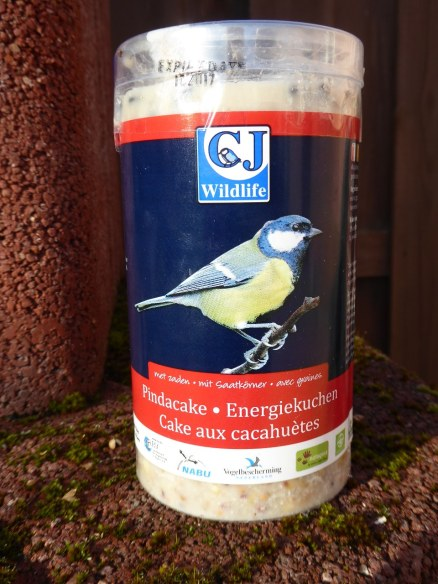 Feeding garden birds in the winter