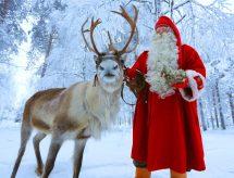 Santa Claus Reindeer - Sleigh Ride Rovaniemi